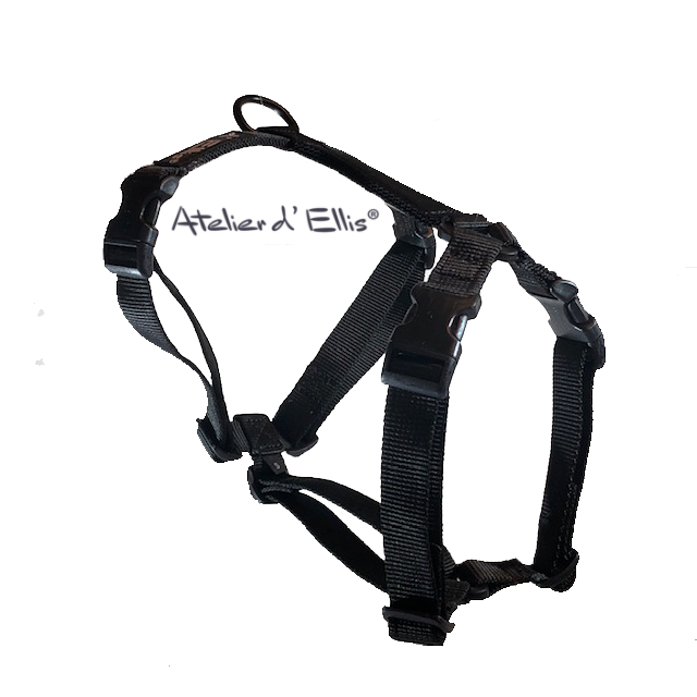 Harness-Black-S